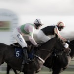 Oxford Photographer - Stratford Races - First past the finishing post